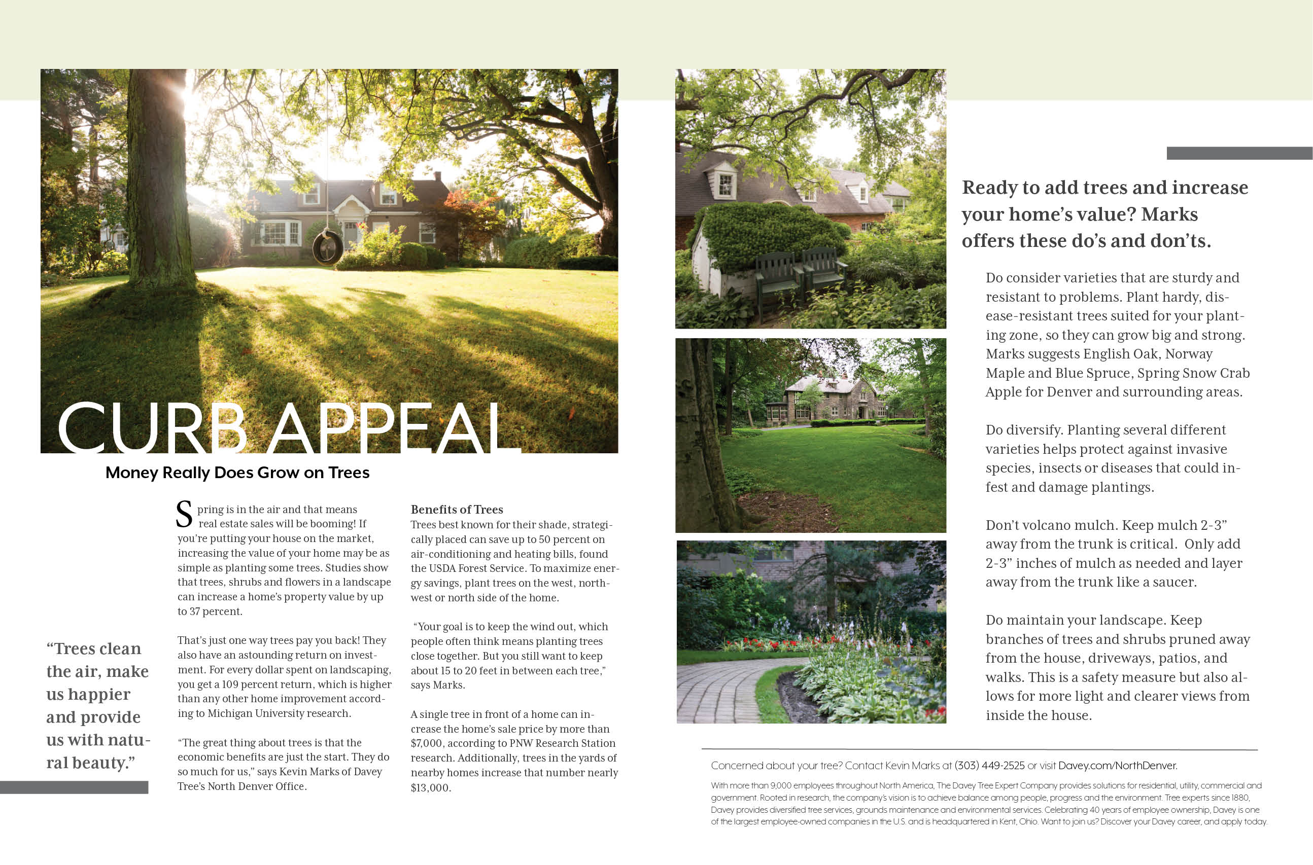 Cherry Creek Now - Curb Appeal ad layout
